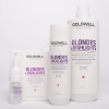 Goldwell Blondes & Highlights
